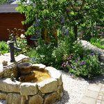 Funkelgrün - unser Garten in Bildern