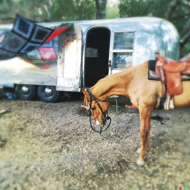¡A todo galope! Channing Tatum recibe un caballo de regalo de cumpleaños