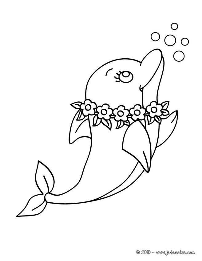 Pingl par marjolaine grange sur animaux aquatique - Dauphin dessin couleur ...