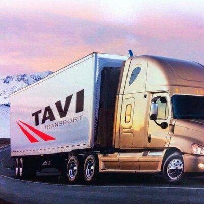 Tavi Logistics LLC. http://www.ziplanes.com