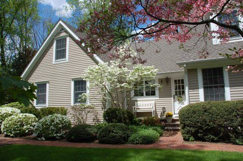 Ornamental Trees That Can Be Used Near The Home And Look 400 x 300