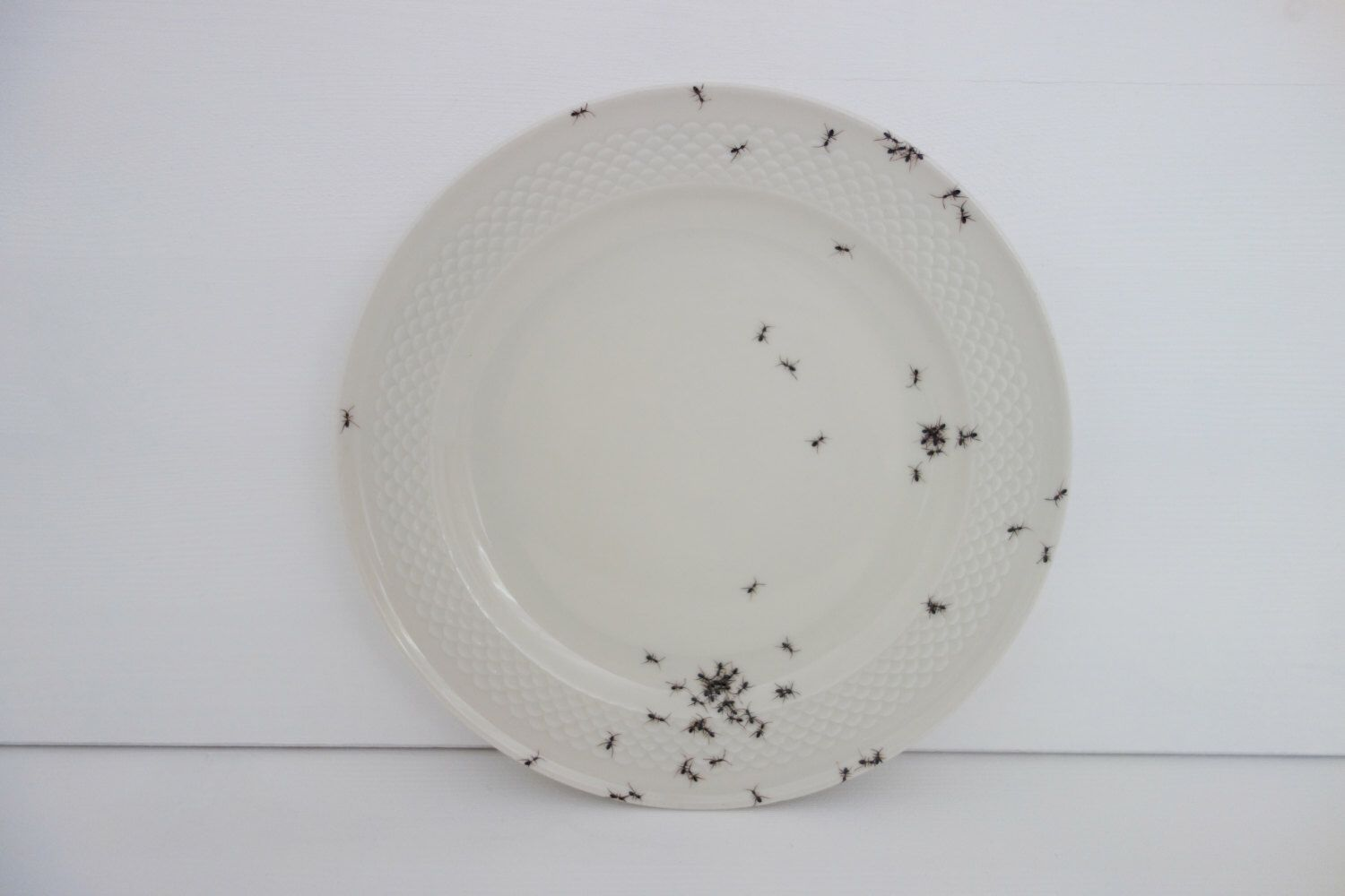 """wall plate """"Chitins Gloss"""" vintage porcelain handpainted with ants by LAPHILIE on Etsy https://www.etsy.com/listing/205443424/wall-plate-chitins-gloss-vintage"""