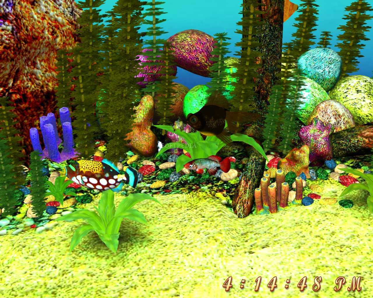 Free full version 3d screensavers free 3d aquarium screensaver screenshot 1 this is the - Fish tank screensaver pc free ...