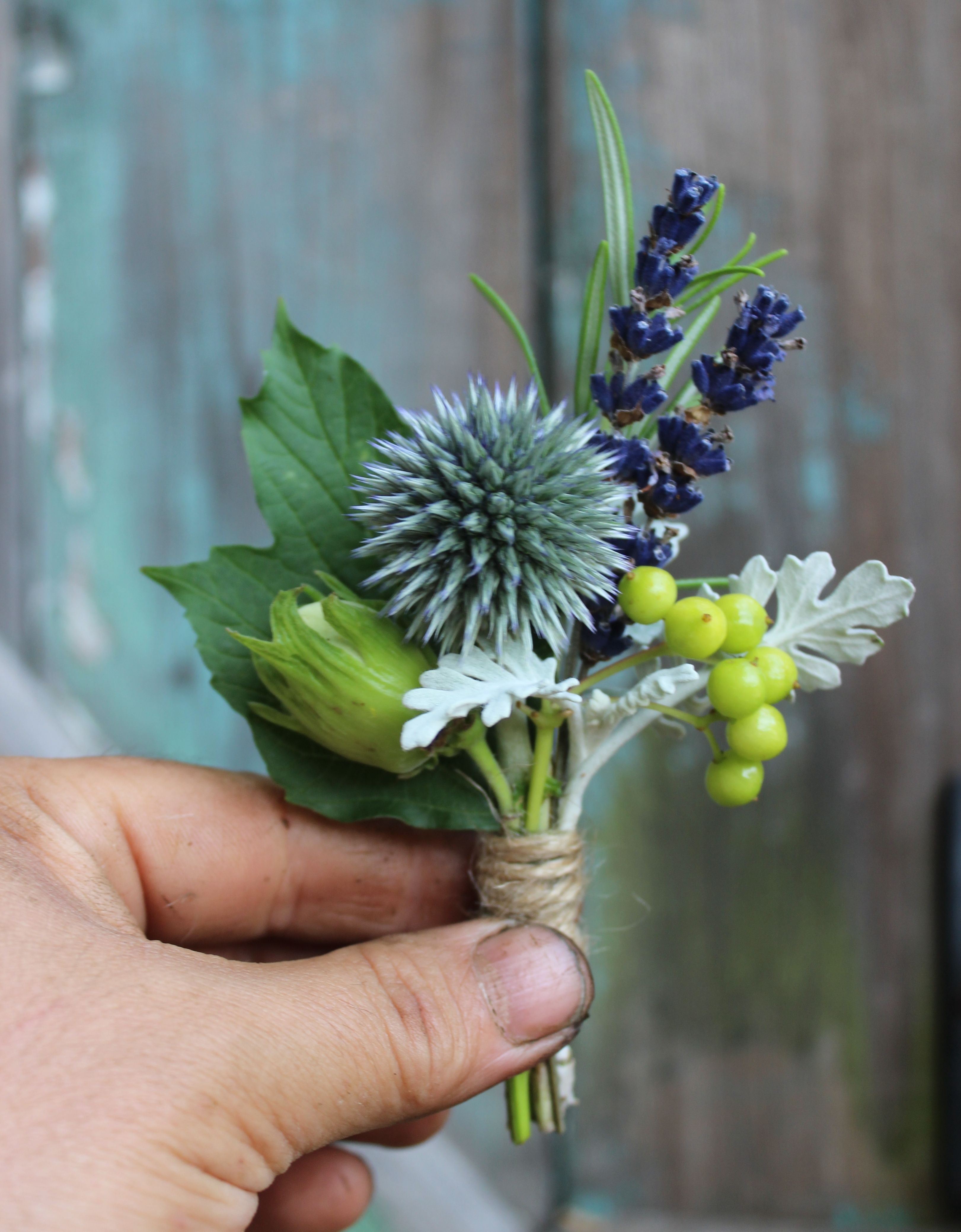 Lock Cottage Flowers Surrey UK August Buttonhole With Echinops Lavender Hazelnut Viburnum