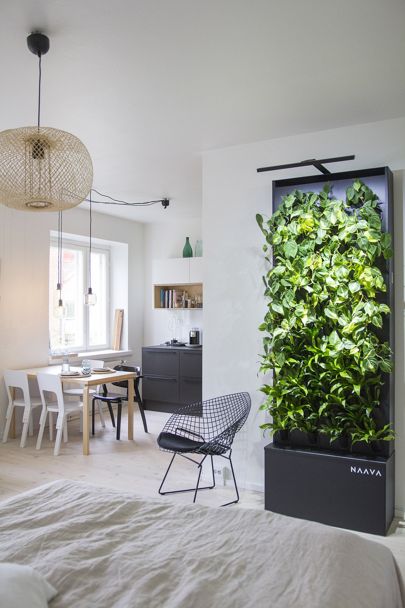 Graphite Black Naava Smart Green Wall Green Interior