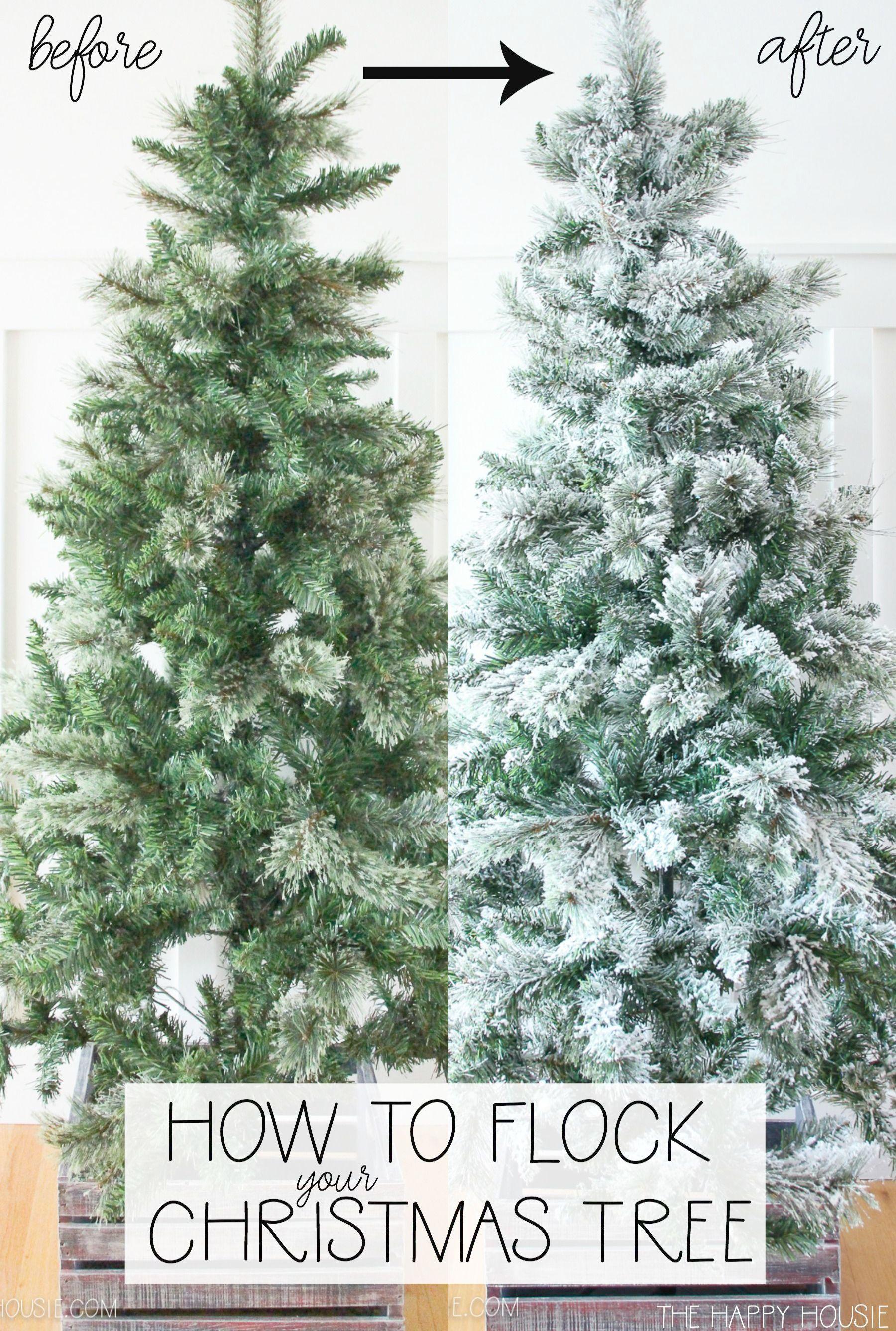 Womens Beautiful Palomino Horse And Christmas Wreath T Shirt Medium Lemon Diy Christmas Lights Diy Christmas Garland Types Of Christmas Trees
