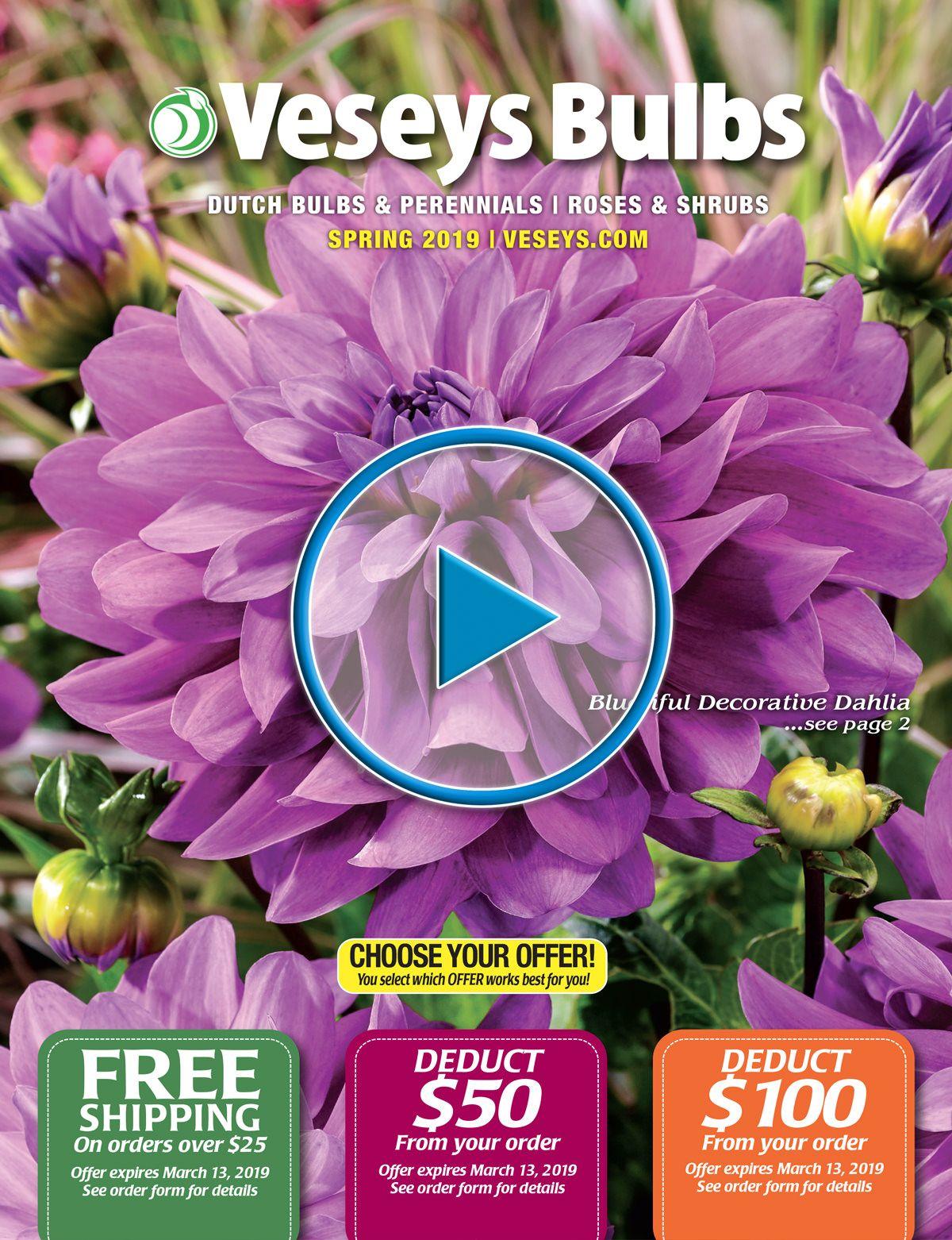 FREE 2019 Veseys Spring Bulb Catalogue | Spring Bulbs & Perennials