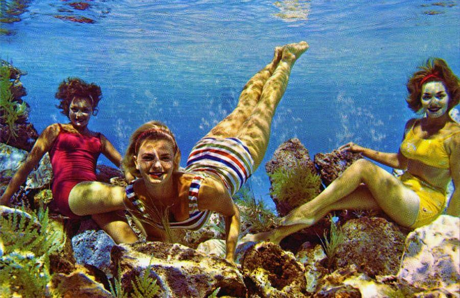 Florida FL Cypress Gardens Mermaids Postcard Old Vintage Card View Standard Post
