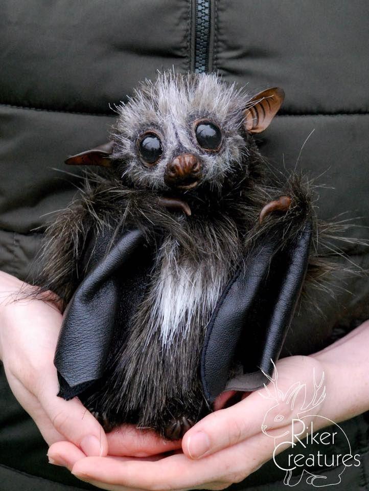 неудивительно, милые картинки с летучими мышами данном видео показан