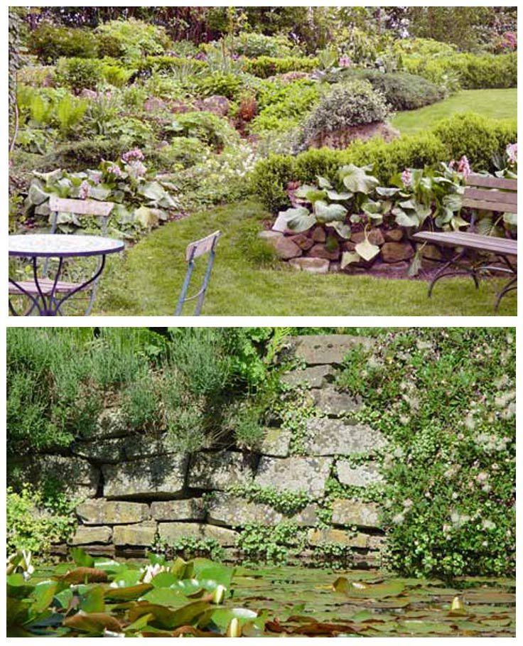 Ein Steingarten zu haben bedeutet nicht, dass dort alles aus Steinen ist und keine Pflanzen stehen. Ganz im Gegenteil: In einem Steingarten gehen Natursteine und Pflanzen eine Symbiose ein. Wie man einen Steingarten anlegt, erklären wir dir.