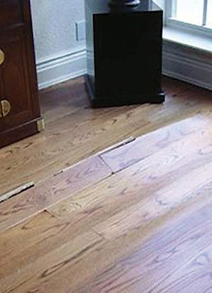 Buckling Is An Example Of A Serious Moisture Issue For A Wood Floor