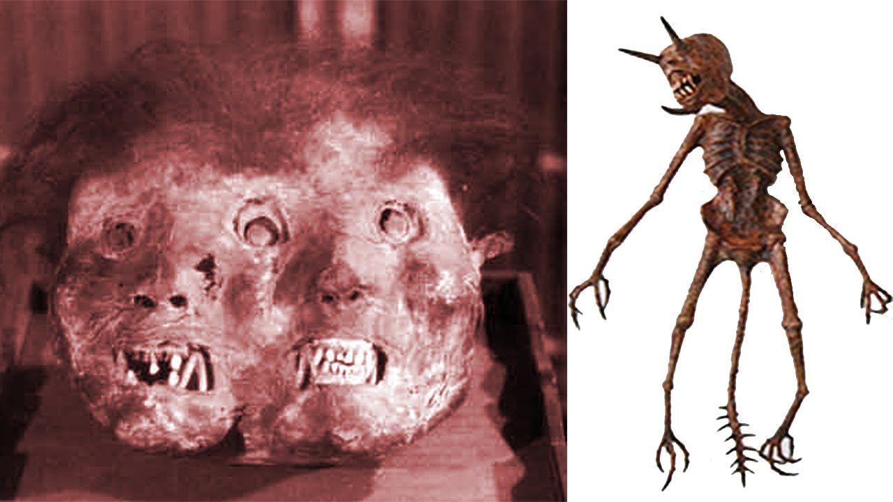 Cadáveres De Demonios Reales - videos de terror fantasmas ...