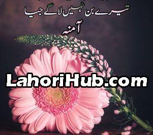 Bin Roye Ansoo Novel by Farhat Ishtiaq Pdf Download ...