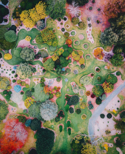 dailyoverview: Check out this awesome drone shot of the... (I don't want realism.) #botanicgarden