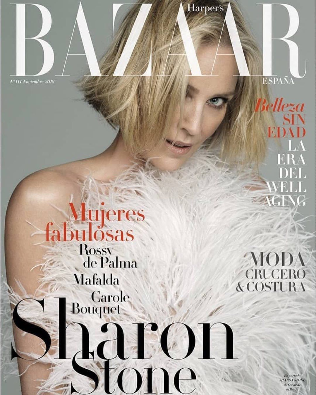 Sharon Stone Graces The Cover Of Harpers Bazaares In Our Odlrfall2019 Feather Gown Sharon Stone Sharon Stone Photos Harpers Bazaar