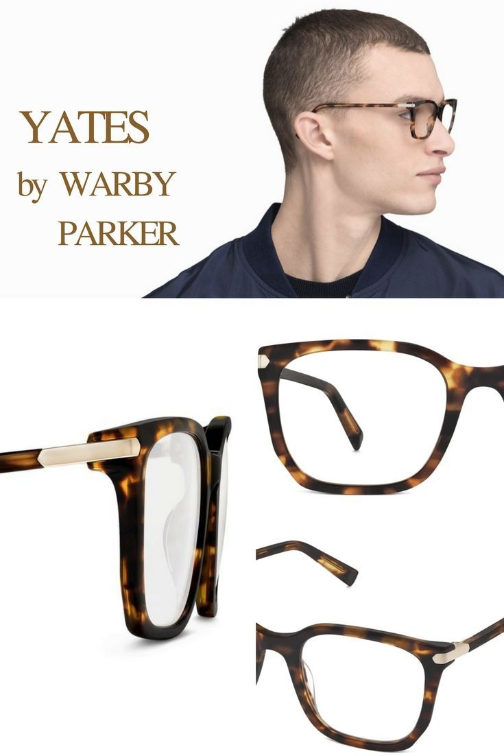 ALCOTT by WARBY PARKER Epigraph Collection Assertive, squarish shape ...