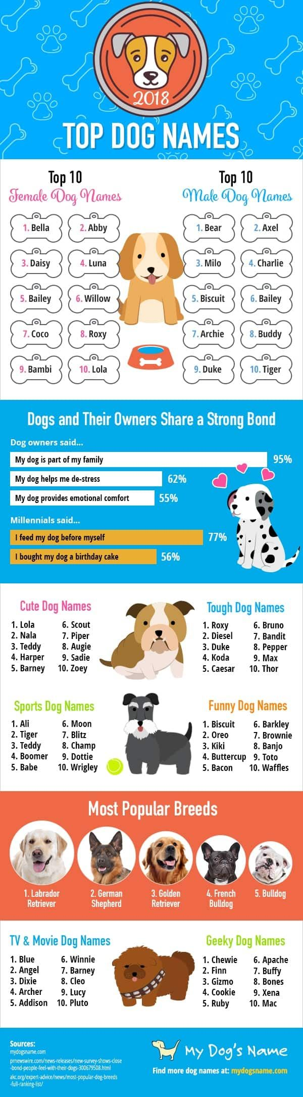 Top 20 Best Dog Names For 2019 Boys Girls Top Dog Names