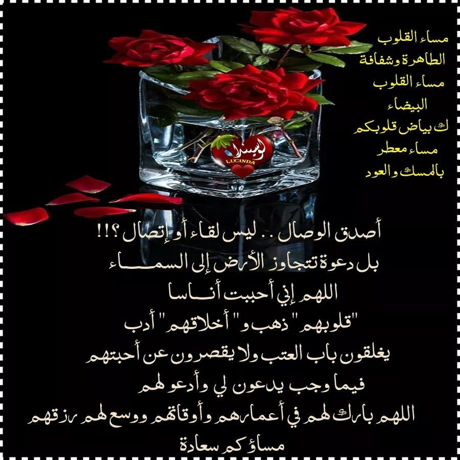 Pin By فلسطينية ولي الفخر On لاجمل عيون بتقرأ مساء الخير Glassware Shot Glass Glass