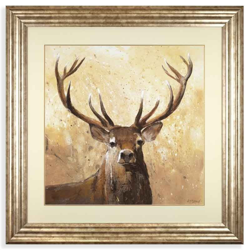 This beautiful Stag print by Adelene Fletcher is a glazed framed ...