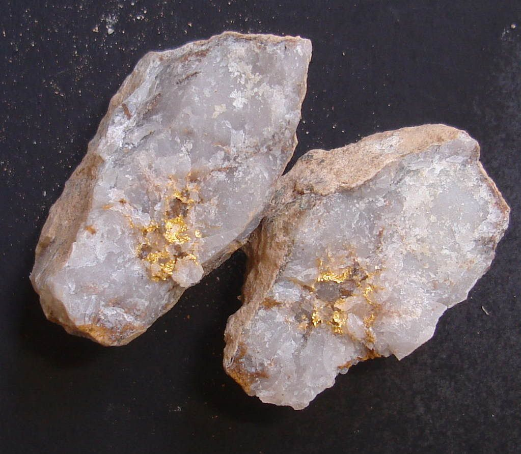RAW GOLD IN QUARTZ Photo By
