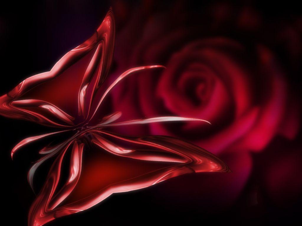 Red flowers free flowers black red desktop wallpaper - Black and red rose wallpaper ...