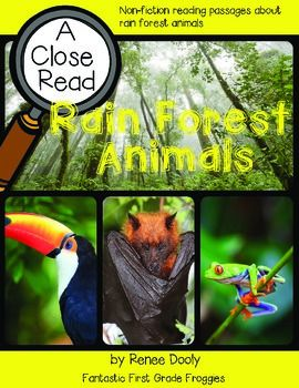 Close Read Rainforest Animals Rainforest Animals Close Reading Forest Animals
