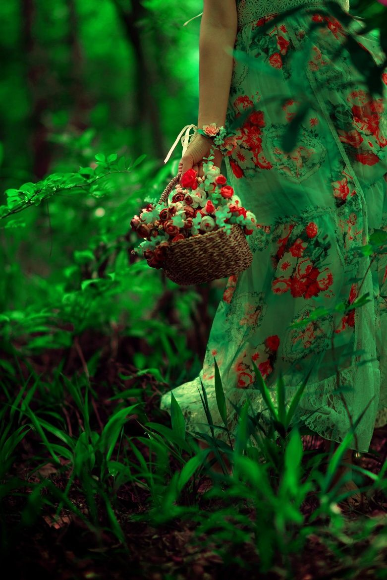 Photograph GREEN by samer shaw on 500px