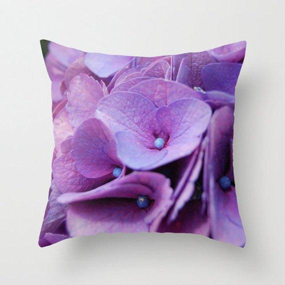 Purple Cushion Hydrangea