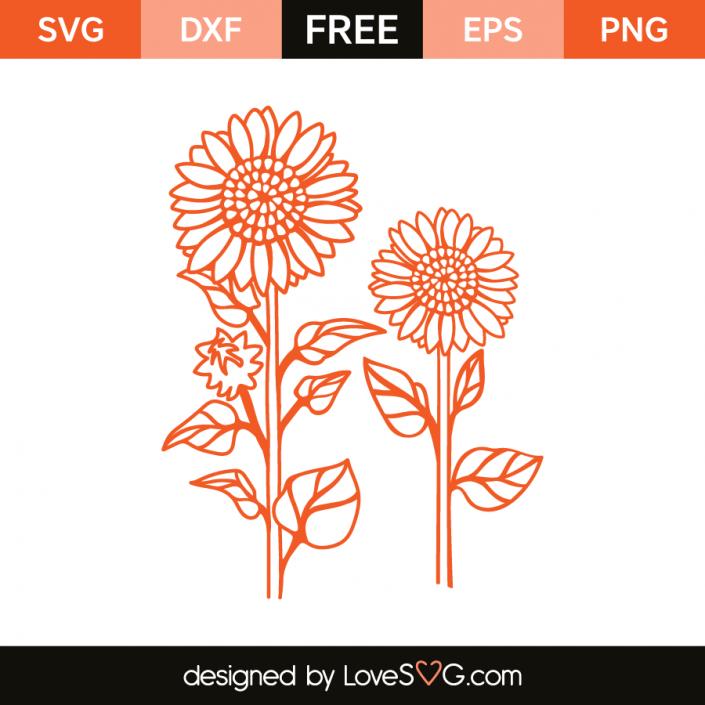 Sunflowers 4289 Free stencils, Flower svg, Cricut