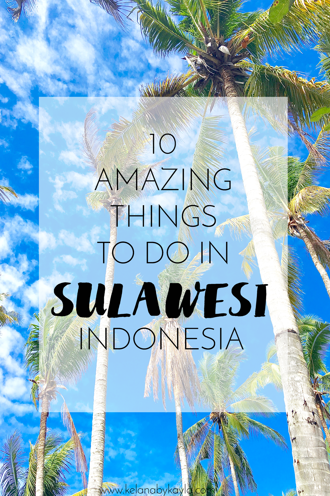 10 Amazing Things To Do In Sulawesi Asia Travel Indonesia Travel Stuff To Do