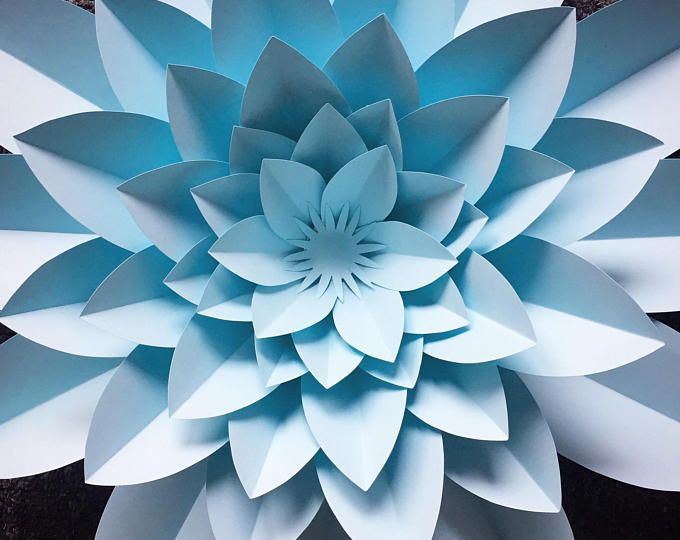Paper Flower Template with Video Instruction, PDF and SVG, 5 petal flower, Digital download, DIY template #bigpaperflowers