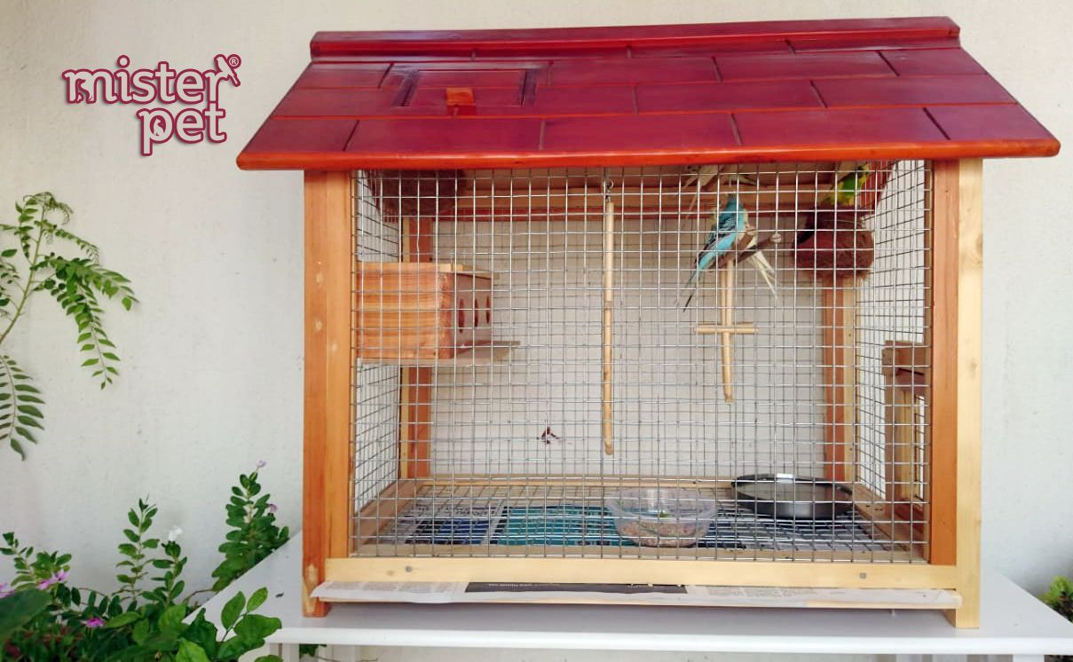 Misterpet Ae Bird Aviary For Sale In Uae Call Us 0567662799 065573399 Misterpet Misterpetuae Bird Aviary For Sale Bird Cages For Sale Pets Online