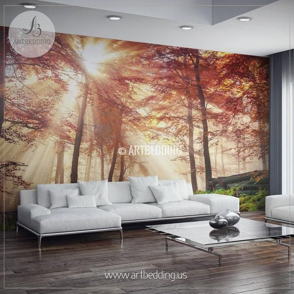 Autumn Sun rays in Forest Wall Mural Autumn Forest photo mural Self