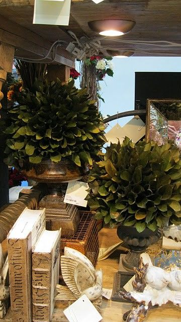 The Enchanted Home: Topiaries