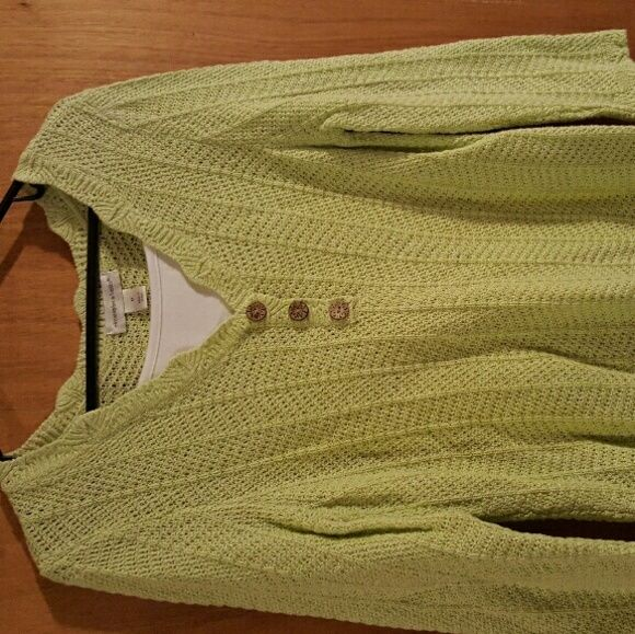 Sweater Green and white sweater great w jeans Christopher & Banks Sweaters Crew & Scoop Necks