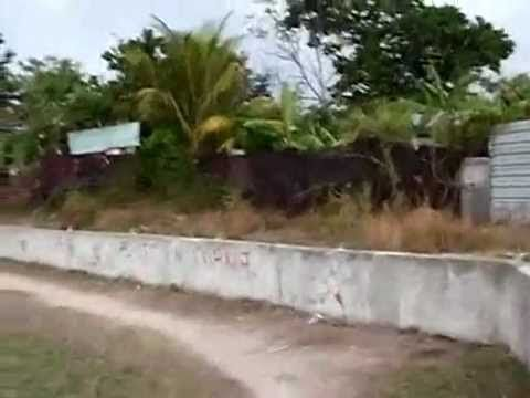 This are the images turist don't see when visit Cuba. Breve visita a San Miguel del Padrón - YouTube