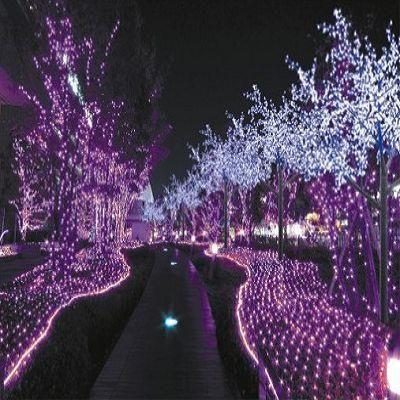 purple outdoor lights. | Purple passion | Pinterest ...