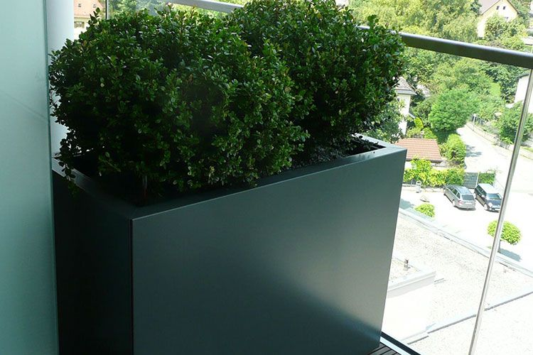 Traumgarten Ag contura modulsystem die traumgarten ag pflanzgefässe