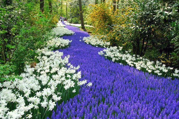 fotos de los jardines mas bellos del Mundo - Buscar con Google
