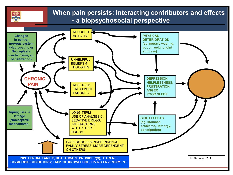 fibromyalgia pain diagram frog external anatomy pin by mbarara university physiotherapy department on