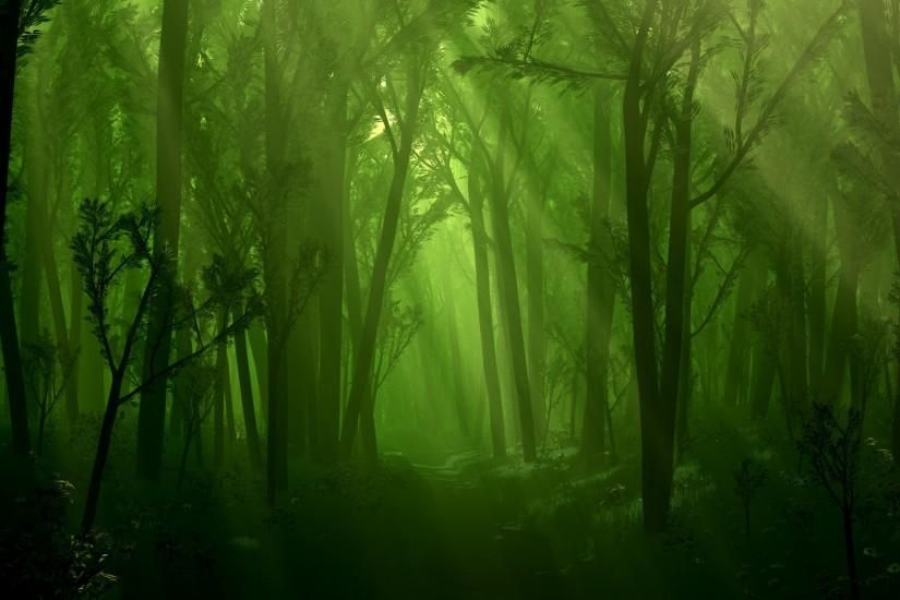 Dark Green Forest Wallpapers Photo With High Resolution Wallpaper Desktop On Dreamy Fantasy Category Simil Forest Wallpaper Forest Background Dark Wallpaper
