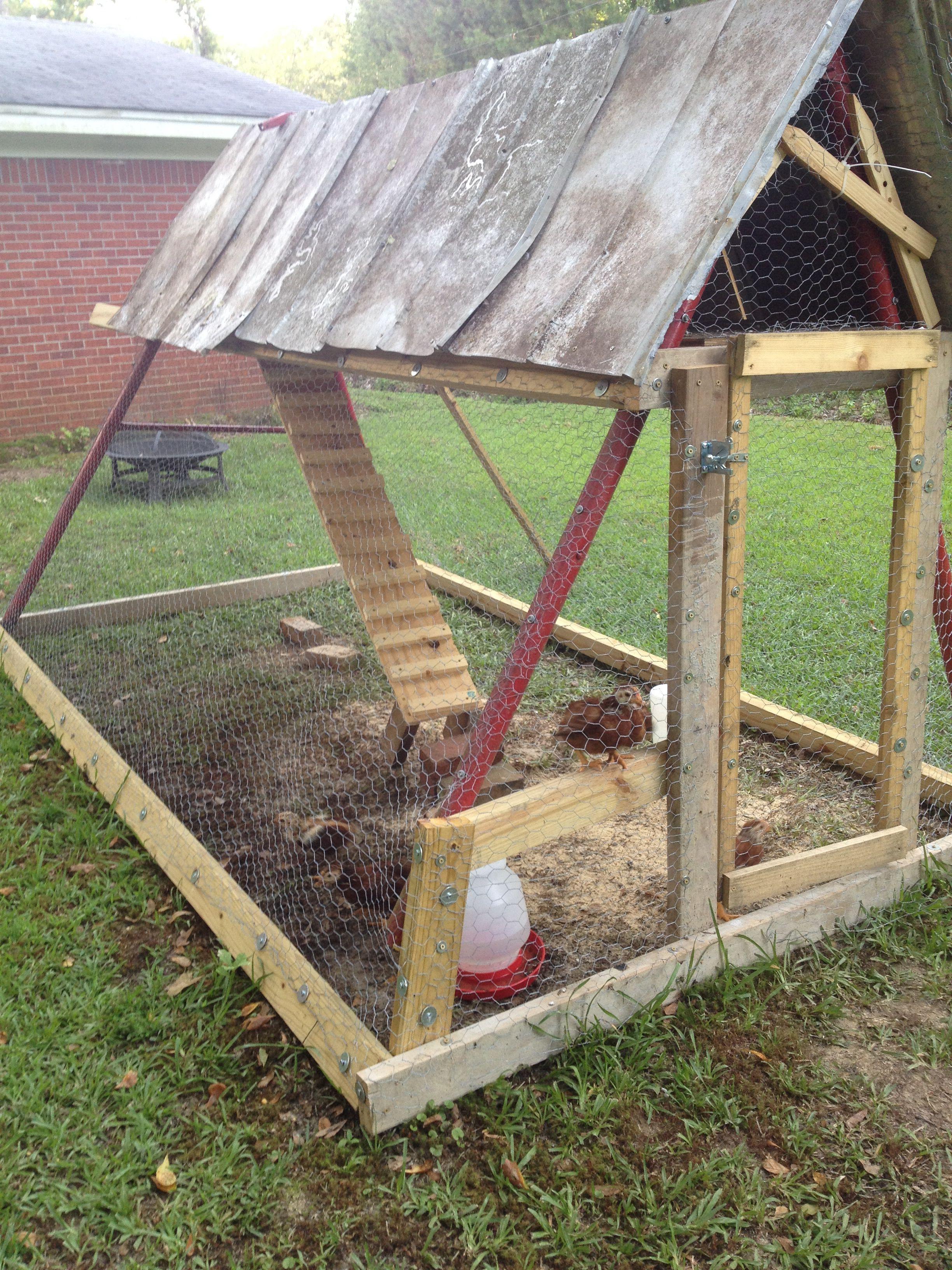 Swing Set Chicken Coop Kandang Ayam Rumah Kebun Kebun Backyard chicken coop designs