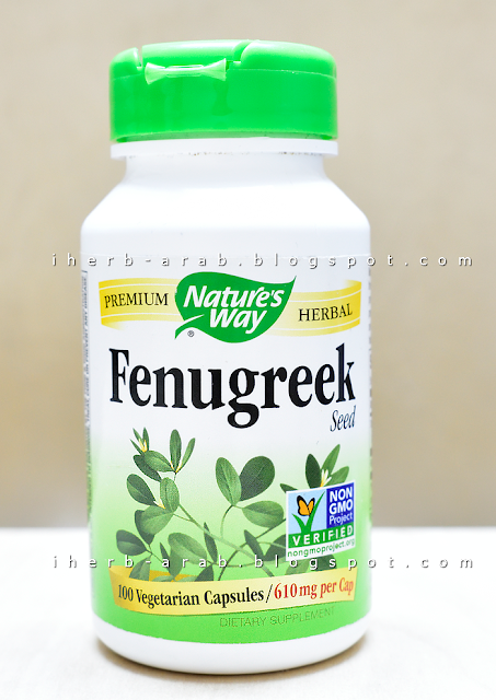مدونة اي هيرب بالعربي حبوب الحلبة الامريكية للتسمين وزيادة الوزن وماهي تجربتي معها Fenugreek Seeds Herbalism Fenugreek