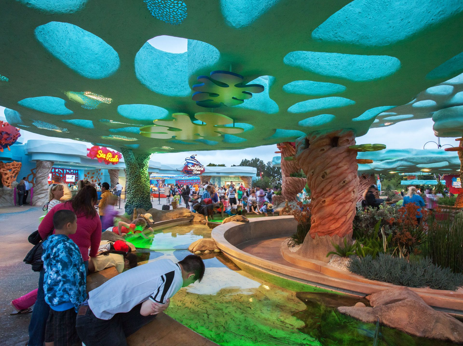 SeaWorld's Explorer's Reef Sea world, Seaworld san diego