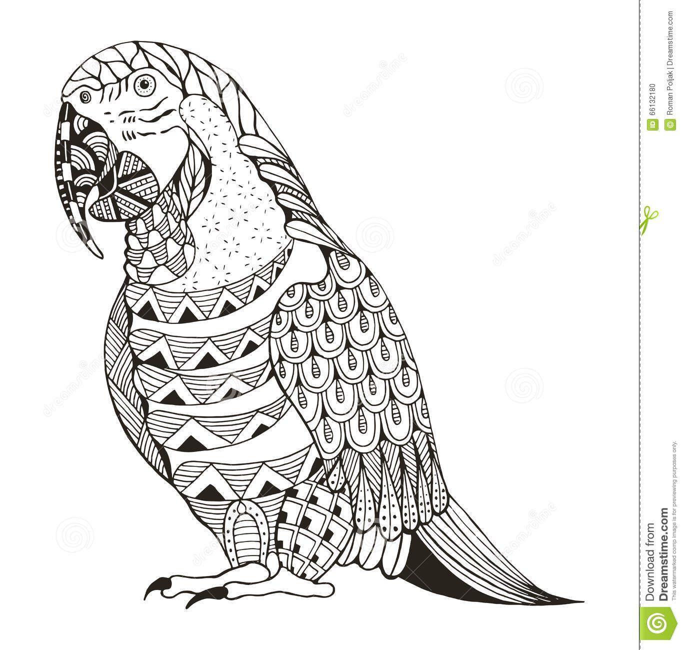 ara parrot zentangle stylized stock vector image