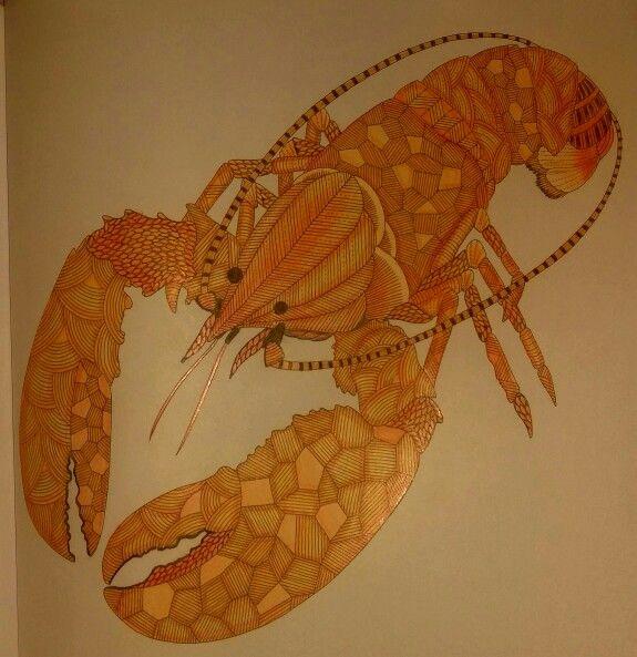 My Finished Larry The Lobster Millie Marottas Animal Kingdom
