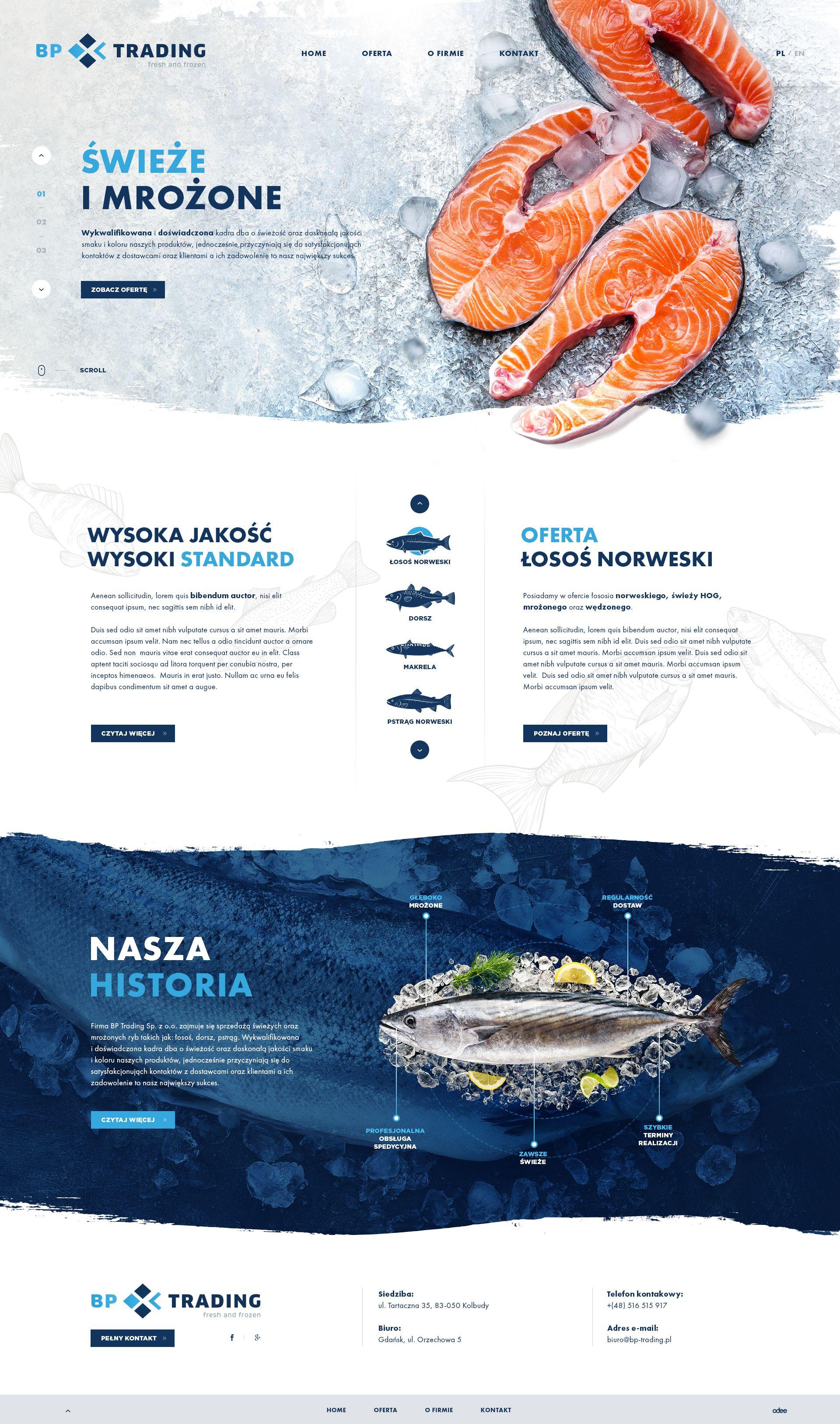 Pin Na Doske Fun Website Design