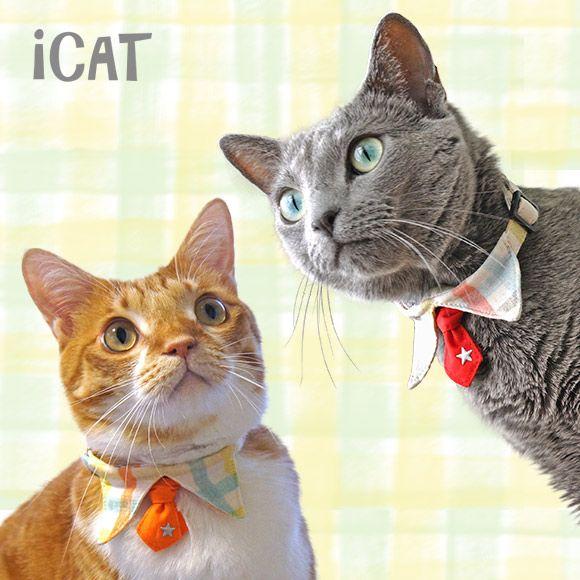 楽天市場 猫 首輪 安全 Icat アイキャット デザインカラー キャンディーチェック M便 1 5 国産 布製 カラー 軽量 セーフティ 簡単 猫首輪 猫の首輪 猫用首輪 Icat I Dog icat 猫首輪 猫グッズ ペットアクセサリー 猫の首輪 猫