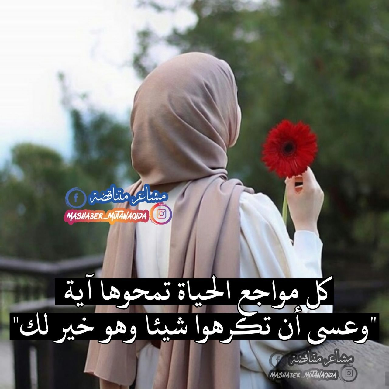 کل مواجع الحياة تمحوها آية وعسى أن تكرهوا شيئا وهو خير لك Arabic Love Quotes Words Quotes Love Quotes