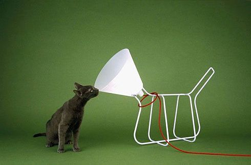 Cone of Shame...lamp ;-)